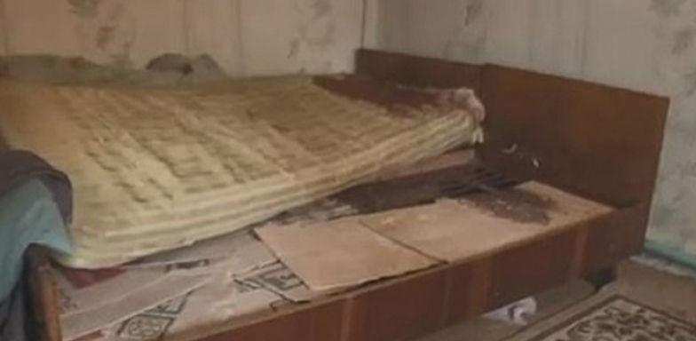 Imagem ilustrativa da notícia: Mulher mata marido e joga pênis da vítima para cachorro comer