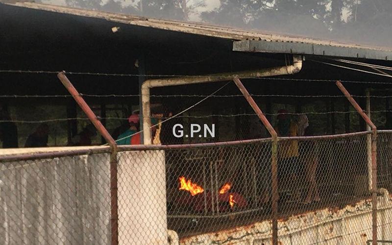 Imagem ilustrativa da notícia: Atualizada:16 decapitados entre 55 detentos mortos em rebelião em Altamira