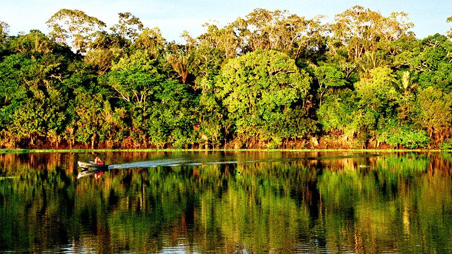 Os debates vão discutir como implementar modelos de desenvolvimento sustentável para Amazônia e fomentar a bioeconomia.