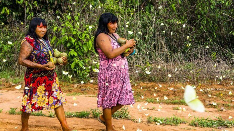 Imagem ilustrativa da notícia: Covid-19 já atinge quase um terço das etnias indígenas, diz comitê