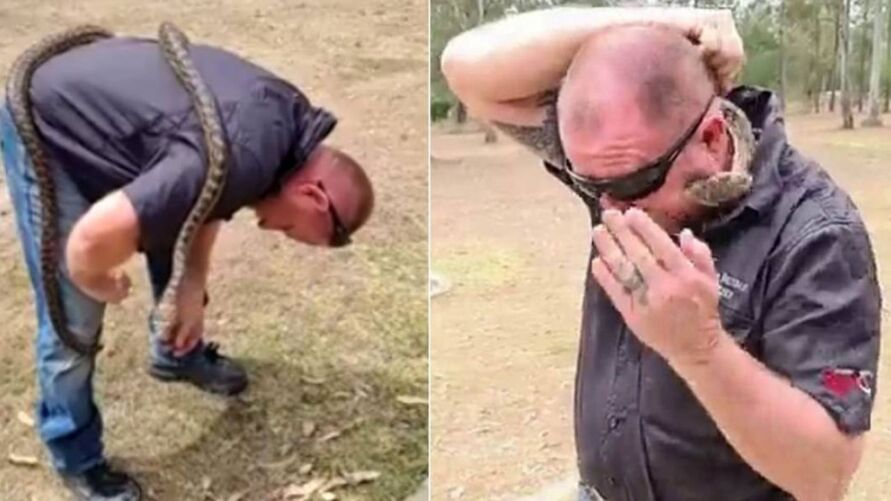 Imagem ilustrativa da notícia: Homem leva picada no rosto de píton ao gravar live no Facebook, veja o vídeo!