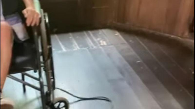 Imagem ilustrativa da notícia: Vídeo: cobra escapa em zoológico e faz menina pular da cadeira de rodas
