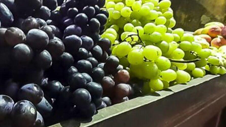 Imagem ilustrativa da notícia: Varejão de Ano Novo da Ceasa oferta alimentos com preços acessíveis