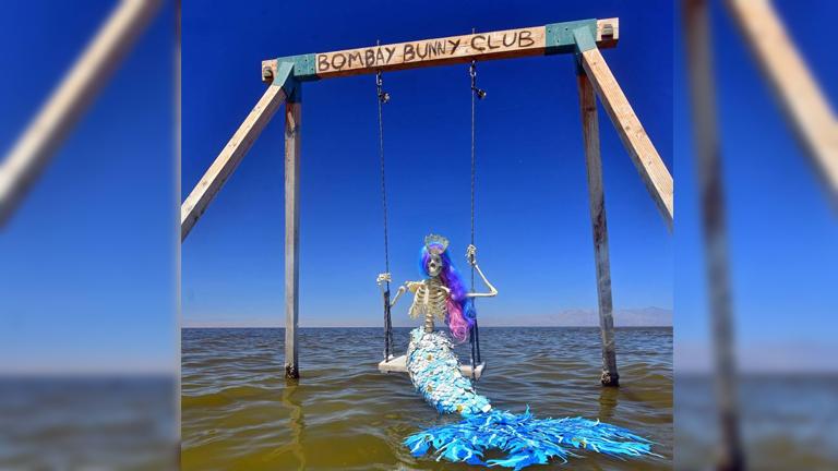 Imagem ilustrativa da notícia: Esqueletos de peruca são encontrados nos EUA. Entenda