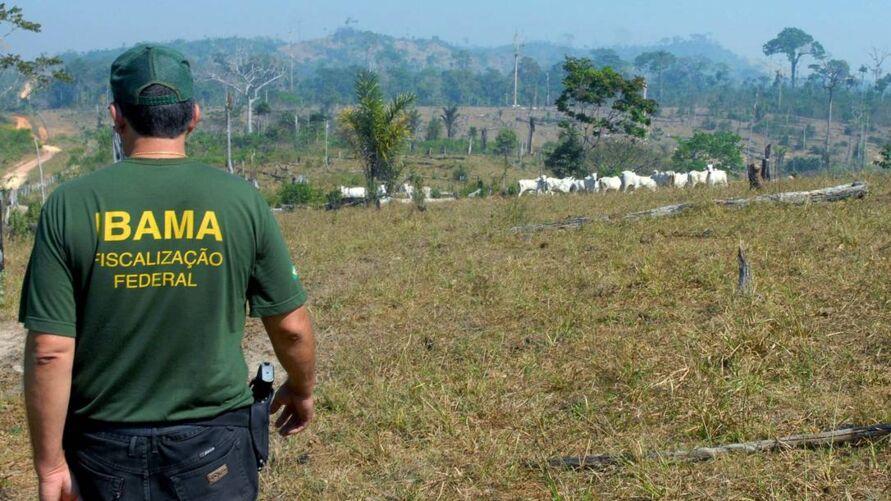 Imagem ilustrativa da notícia: Ibama bloqueia venda de produtos florestais legais do Pará