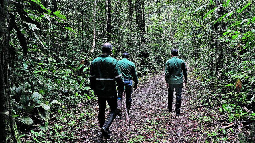 A empresa monitora diariamente as áreas de reservas para evitar qualquer dano para a biodiversidade.