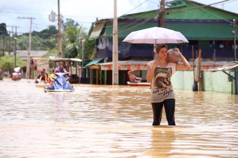 Imagem ilustrativa da notícia: Enchentes devem castigar Amazonas este ano; veja o vídeo!