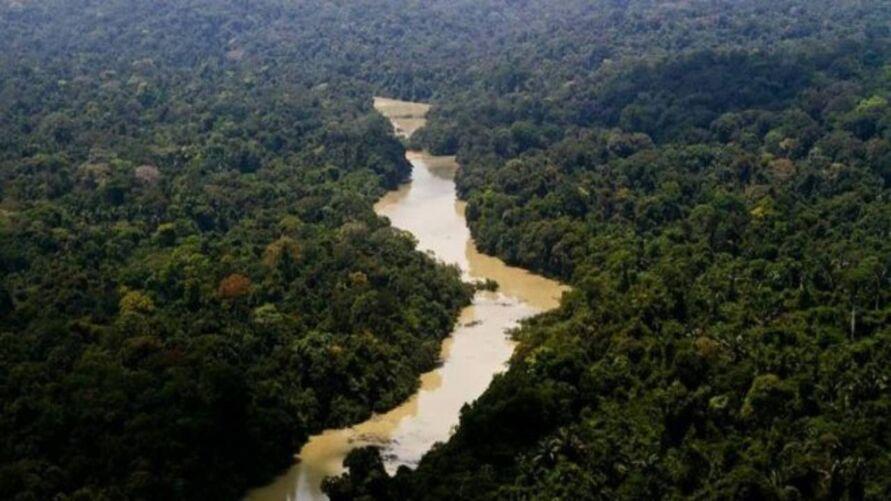 Obra cortaria a Parque Nacional do Jamanxim