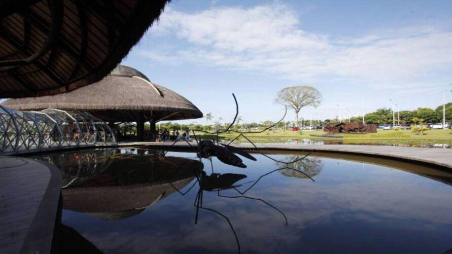 Parque do Utinga receberá neste sábado (20) uma atração especial: a exposição de bonsais, com explicação sobre o processo de criação