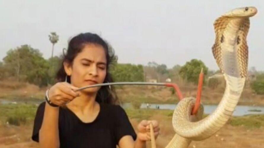O veneno dessa cobra é capaz de derrubar até 20 pessoas ou um elefante