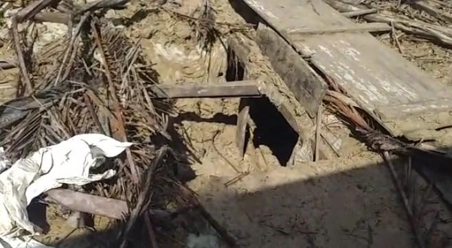 Imagem ilustrativa da notícia: Chacina: corpos são encontrados em cova rasa no Amazonas