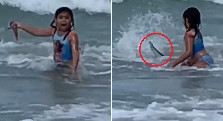 Imagem ilustrativa da notícia: Vídeo: tubarão tenta atacar criança durante banho em praia