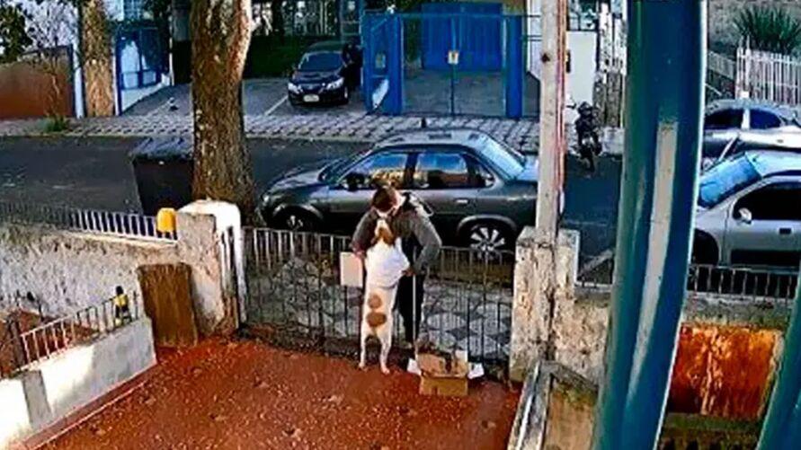 Imagem ilustrativa da notícia: Vídeo: homem rouba blusa de cadela após fazer carinho