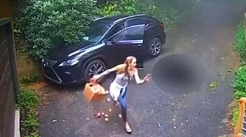 Imagem ilustrativa da notícia: Vídeo: mulher abre o carro e corre ao ver criatura no banco
