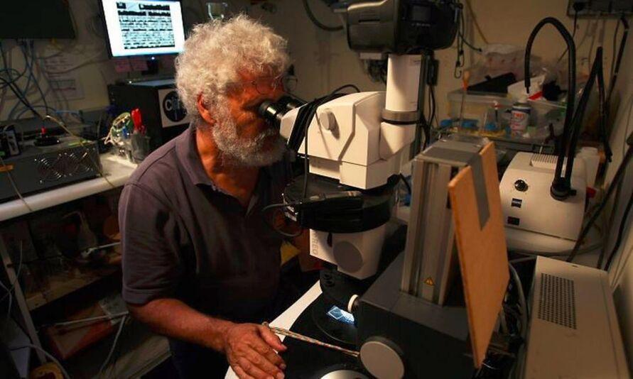 Imagem ilustrativa da notícia: Navio laboratório Tara chega a Belém e recebe visitantes