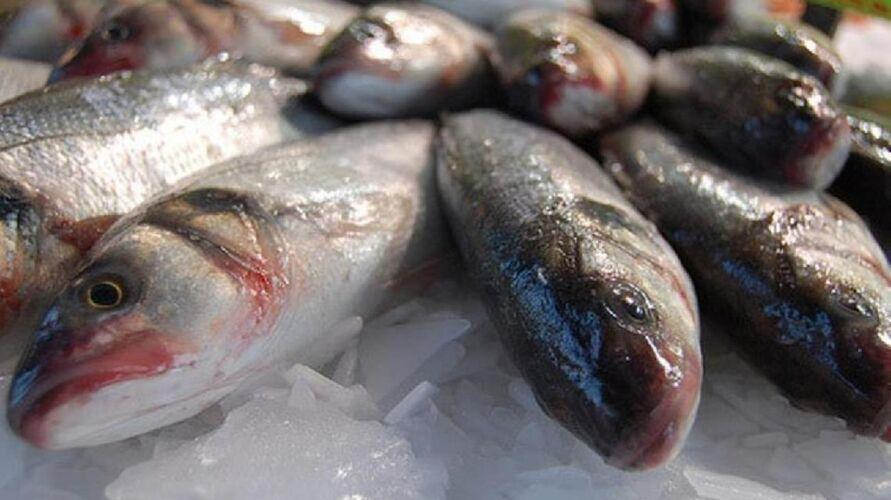 Imagem ilustrativa da notícia: Urina preta: como comer peixe com segurança em Belém