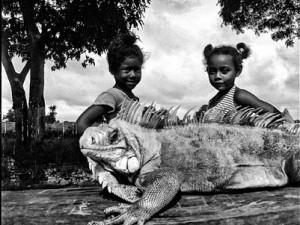 Elza Lima e Guy Veloso em livro de fotografias