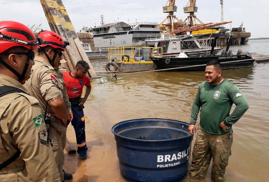 Animal foi resgatado pelas equipes da Semma, Corpo de Bombeiros e ZooUnama