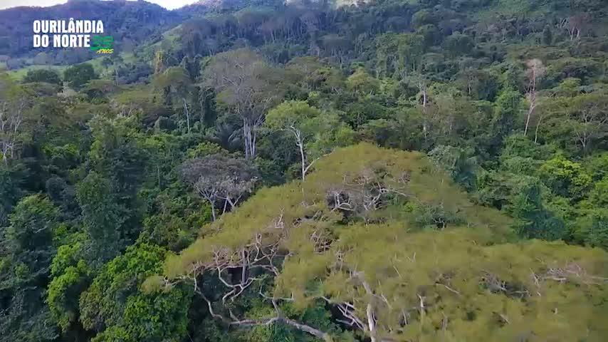 """Imagem ilustrativa da notícia: """"Ourilândia 33 anos"""": Conheça as cachoeiras do rio Cateté"""