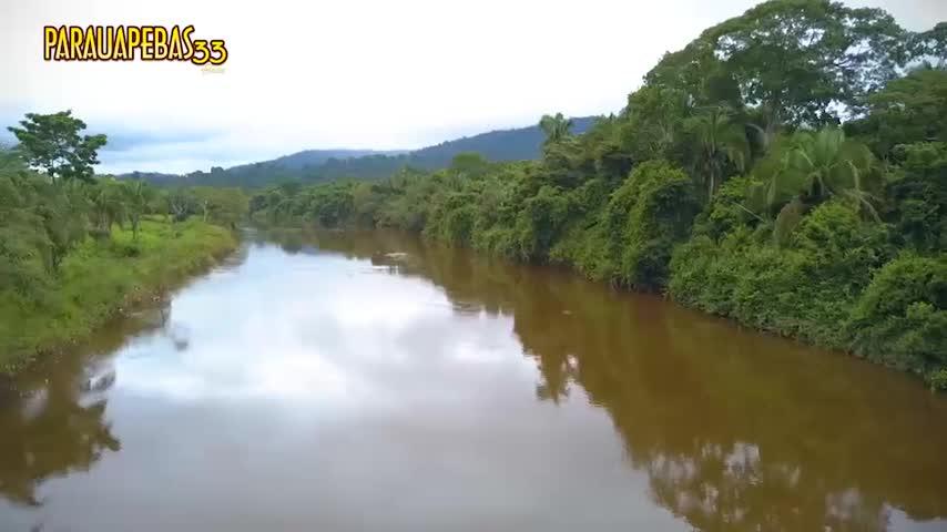 Imagem ilustrativa da notícia: Parauapebas 33 anos: Terras indígenas Xikrin do Cateté